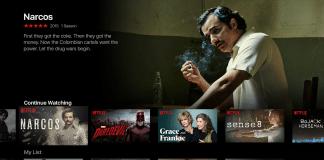 Netflix In India Final.
