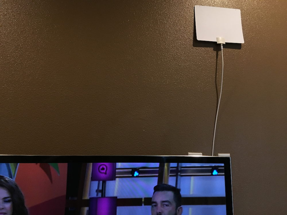 wall-mounted mohu leaf